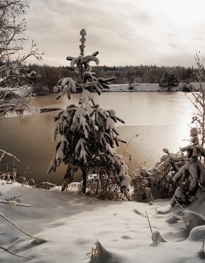 Озеро в сепии