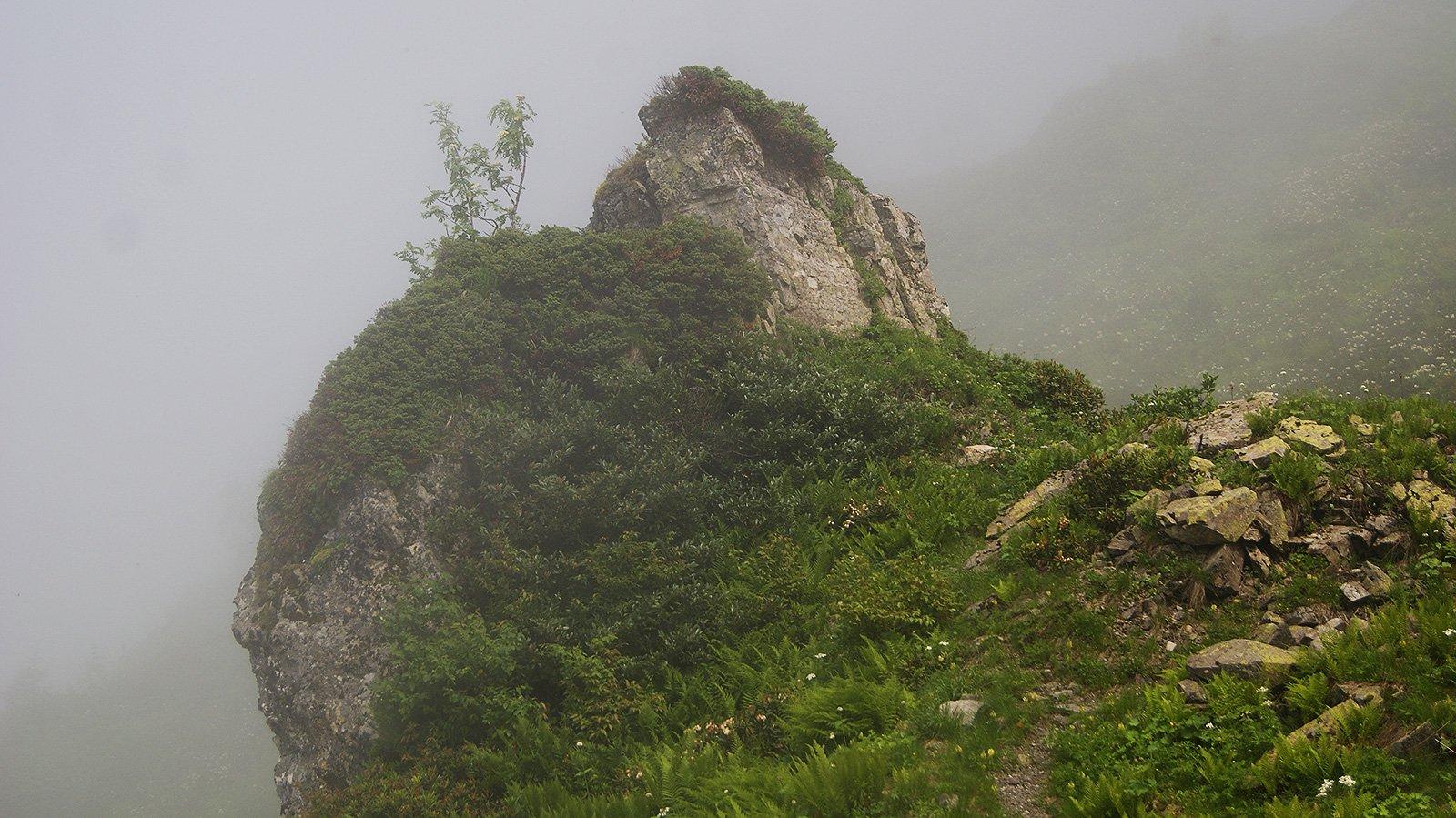 Бастион, охраняющий остатки тропы