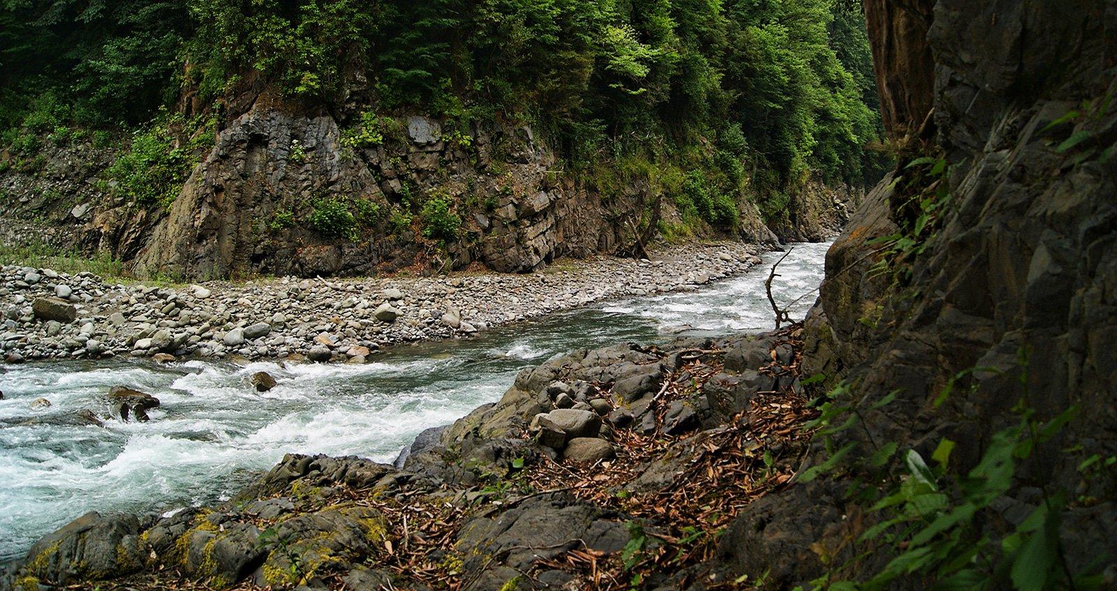 река Восточная Гумиста