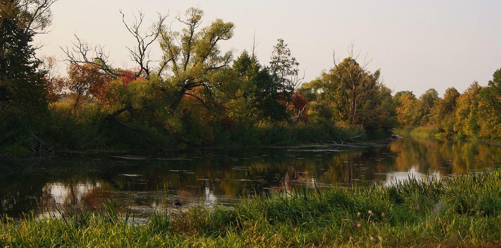 Река Сев