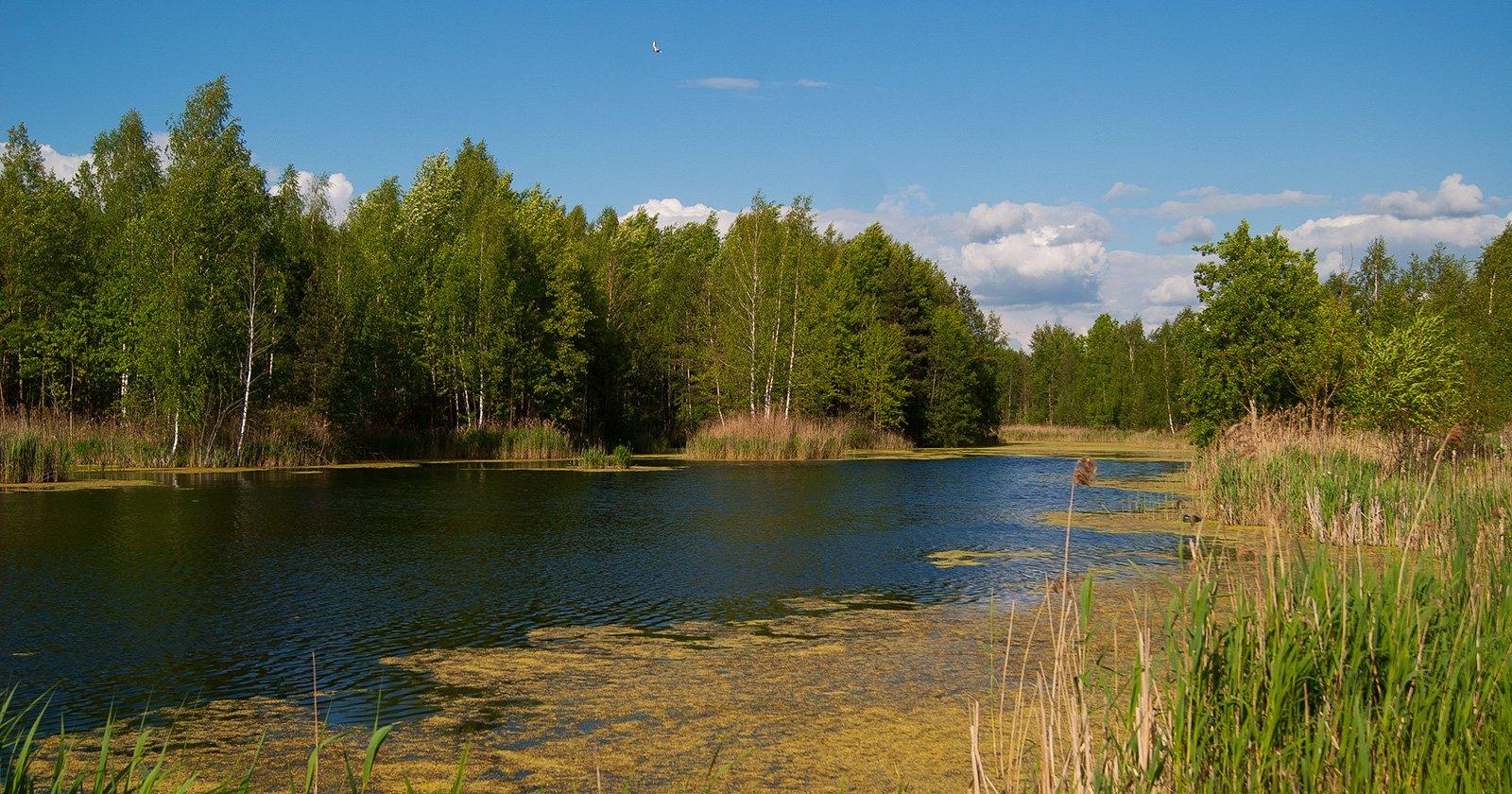 Безымянные озера