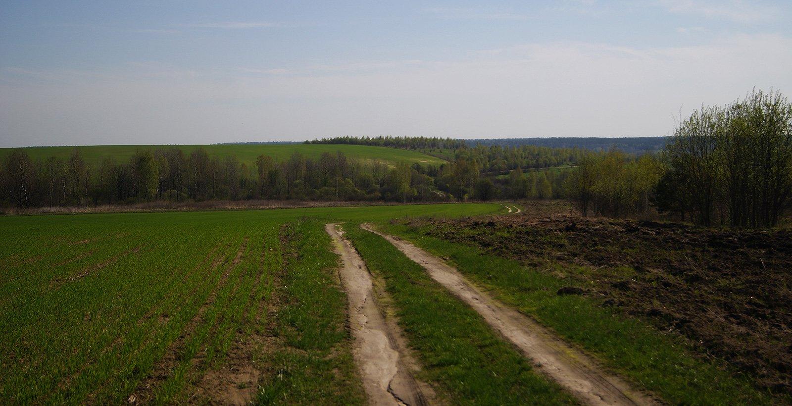 дорога с холма к деревне Вербежичи