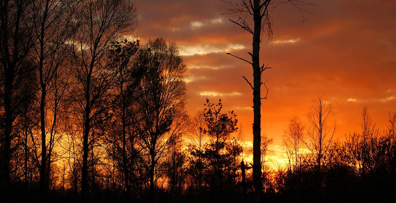 закат в урочище Жердевка