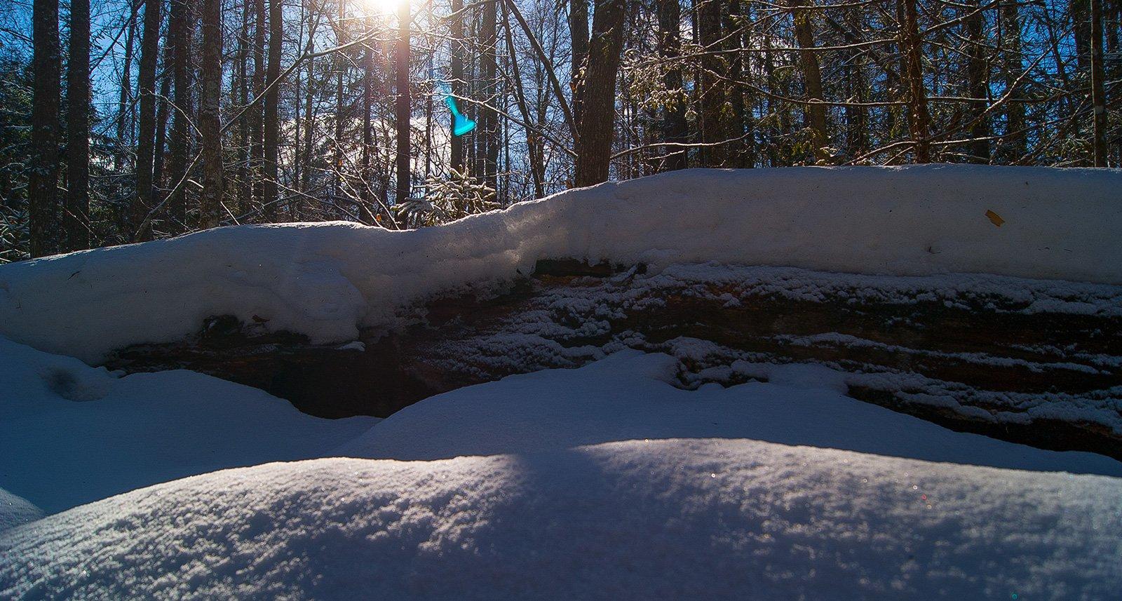 Долгая зима в слоях