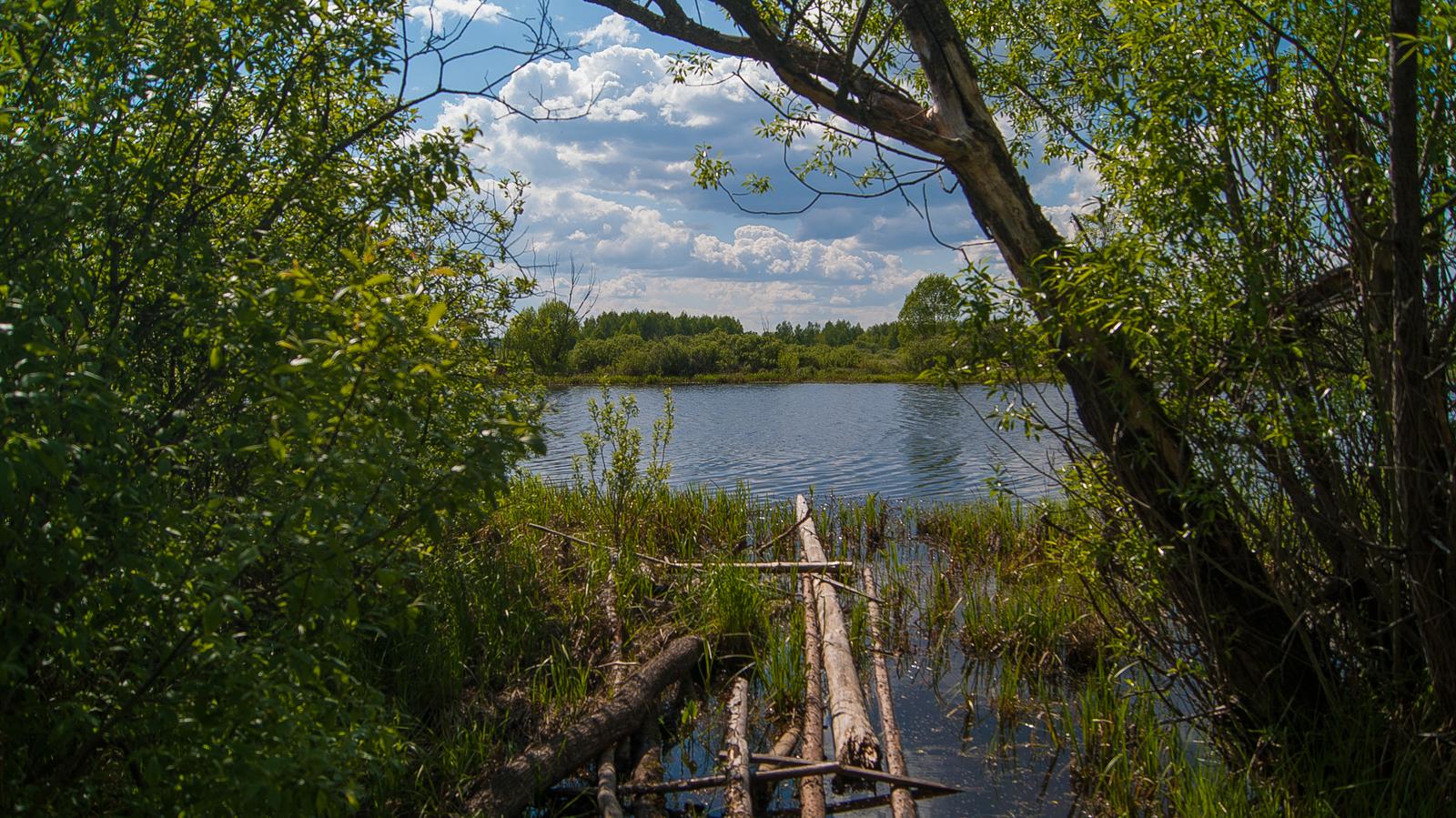 озеро Голосок