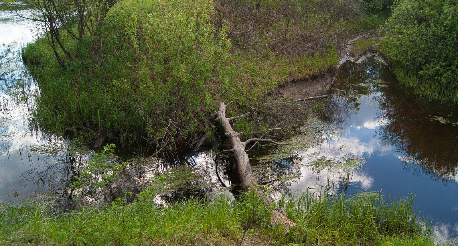 кладь через реку Рача у впадения её в Десну