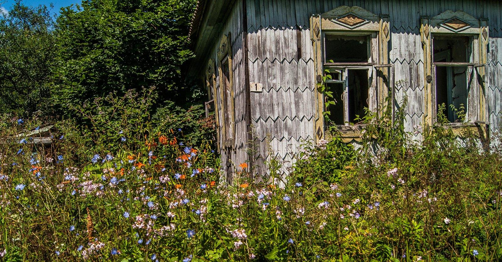 Около некоторых домов разрослись бывшие палисадники с цветами