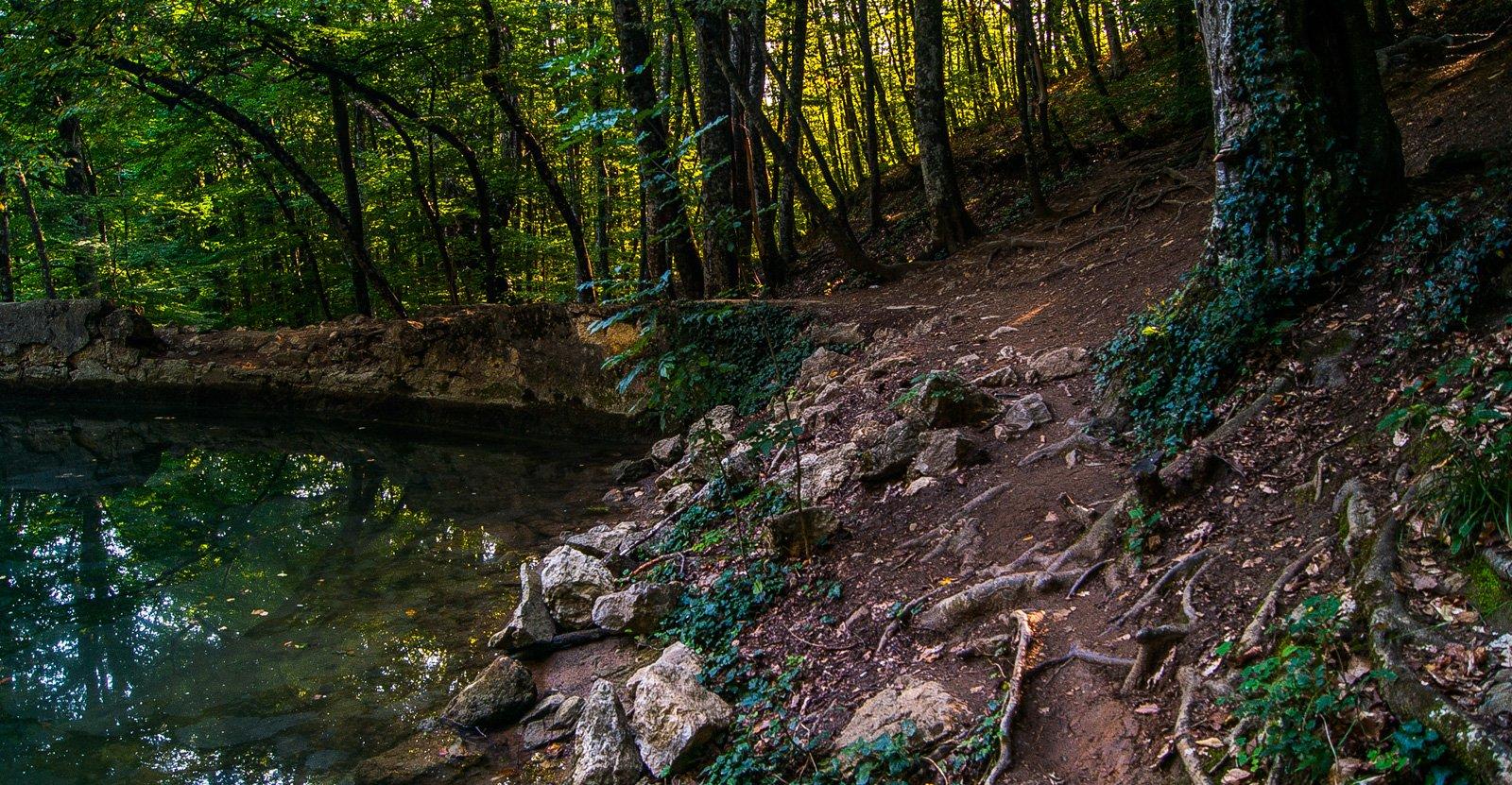 На естественном ровном участке ниже пещеры построили каменную дамбу, перегородив речку таким образом, что образовалось озерцо диаметром около 30-40 метров.