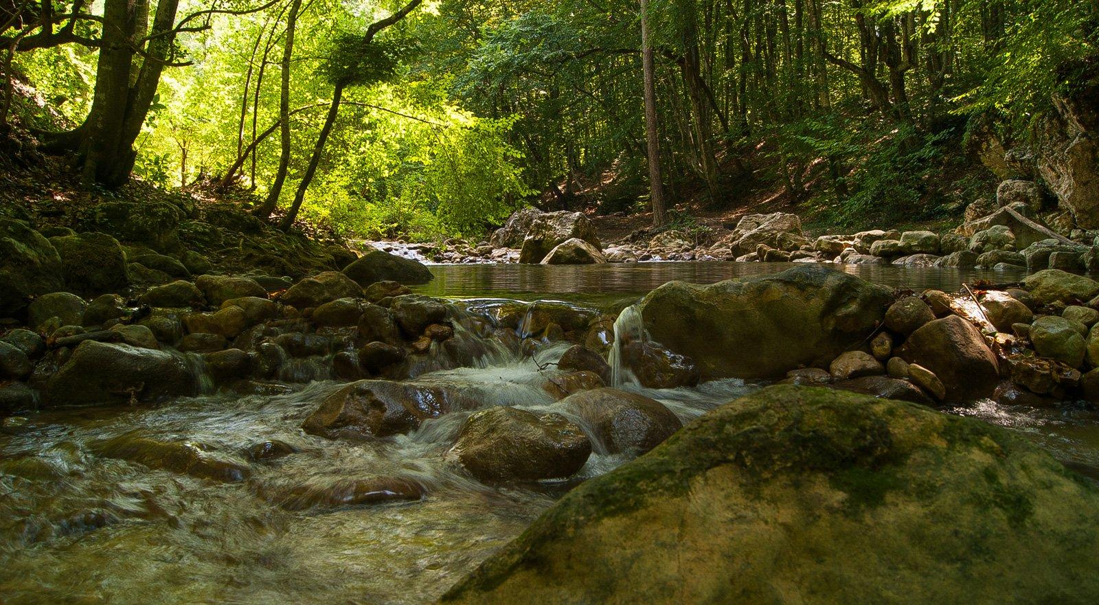 Река Коккозка — образована слиянием рек  Аузун-Узень и Сары-Узень