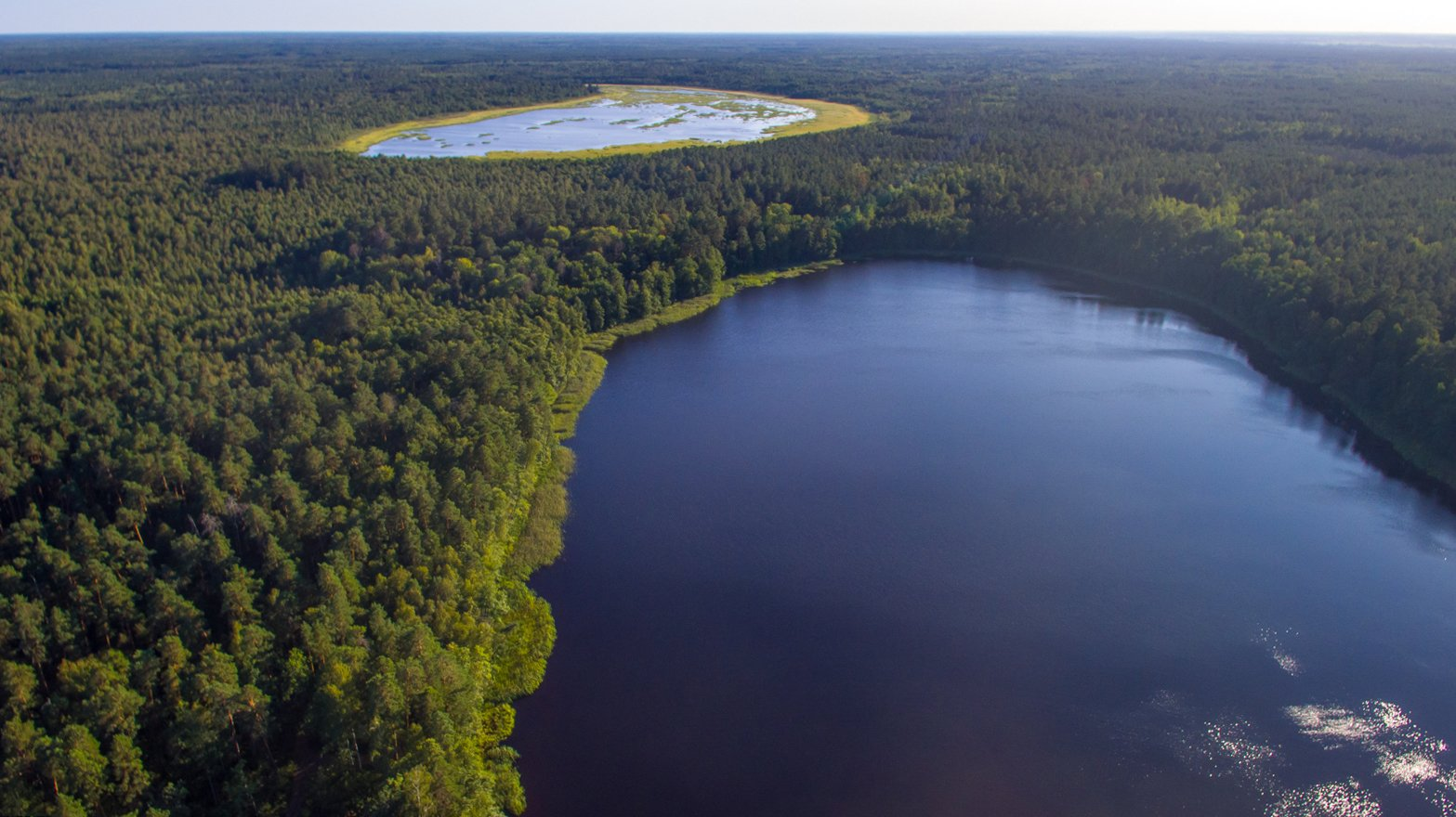 Большое ( вдали) и Малое Жеринские озера с высоты 220 метров. Салатовая полоса, окаймляющая Большое озеро - сплавнина.