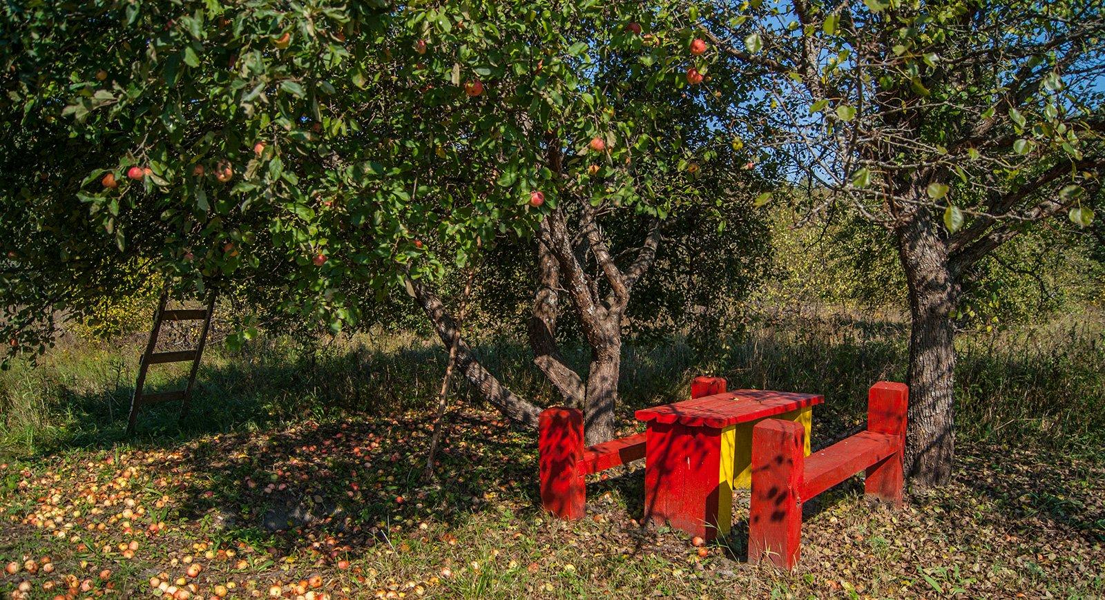 Уютный столик в ур. Красный Пахарь