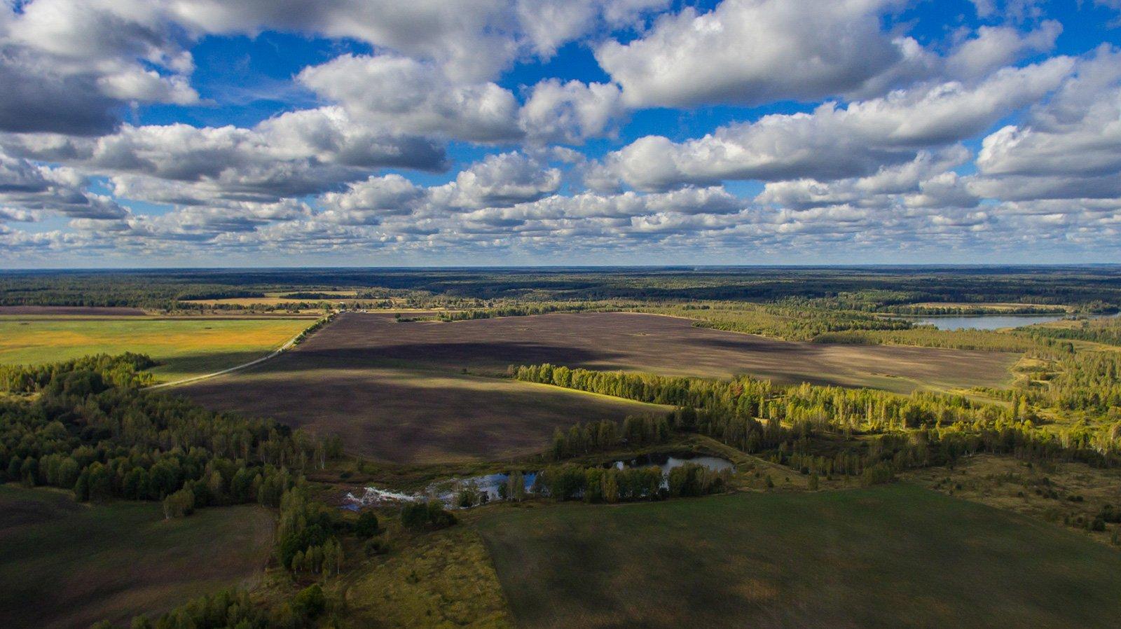 Быковичское и Белоголовьское озера
