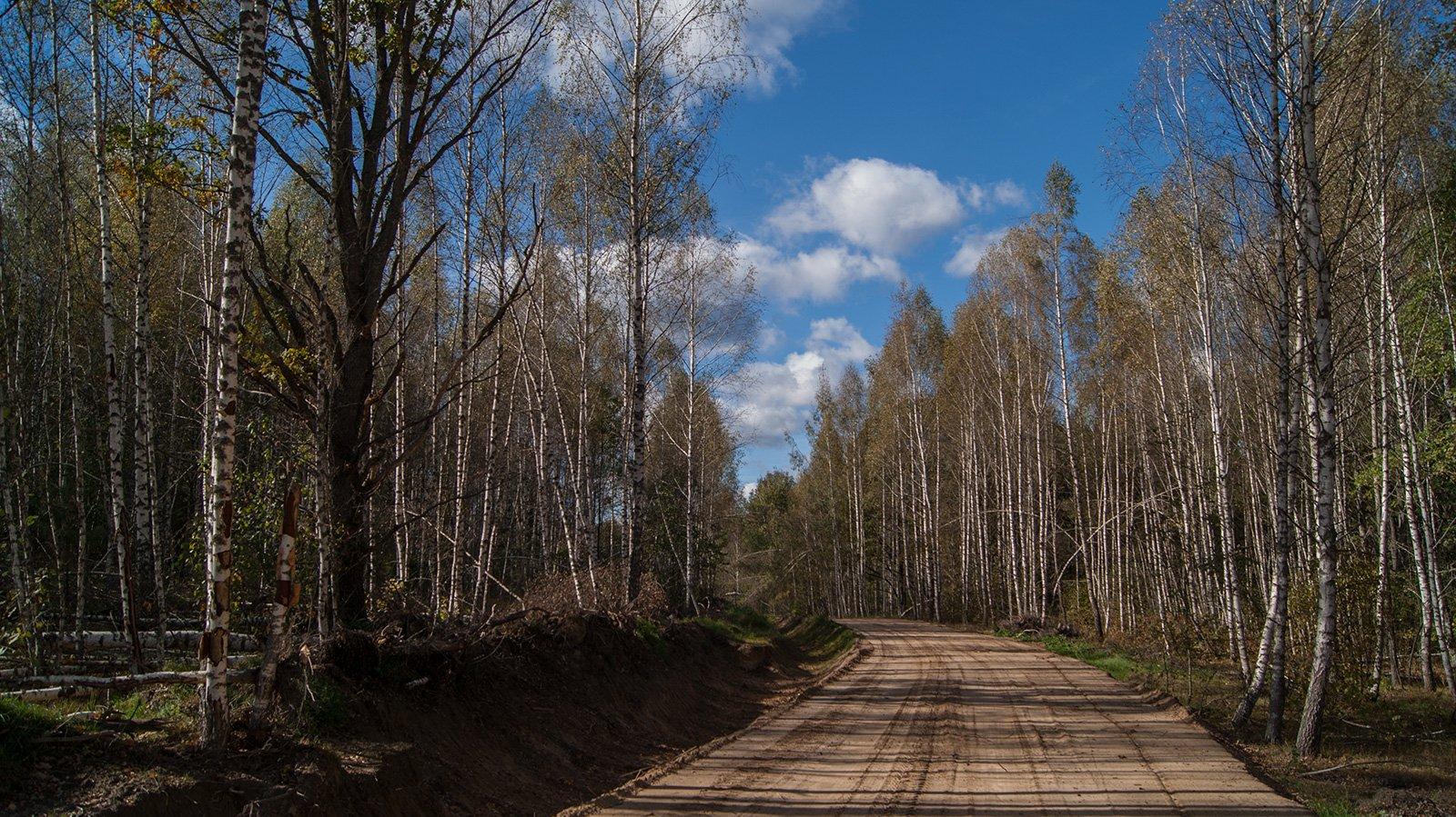 Новая дорога к оленьей ферме