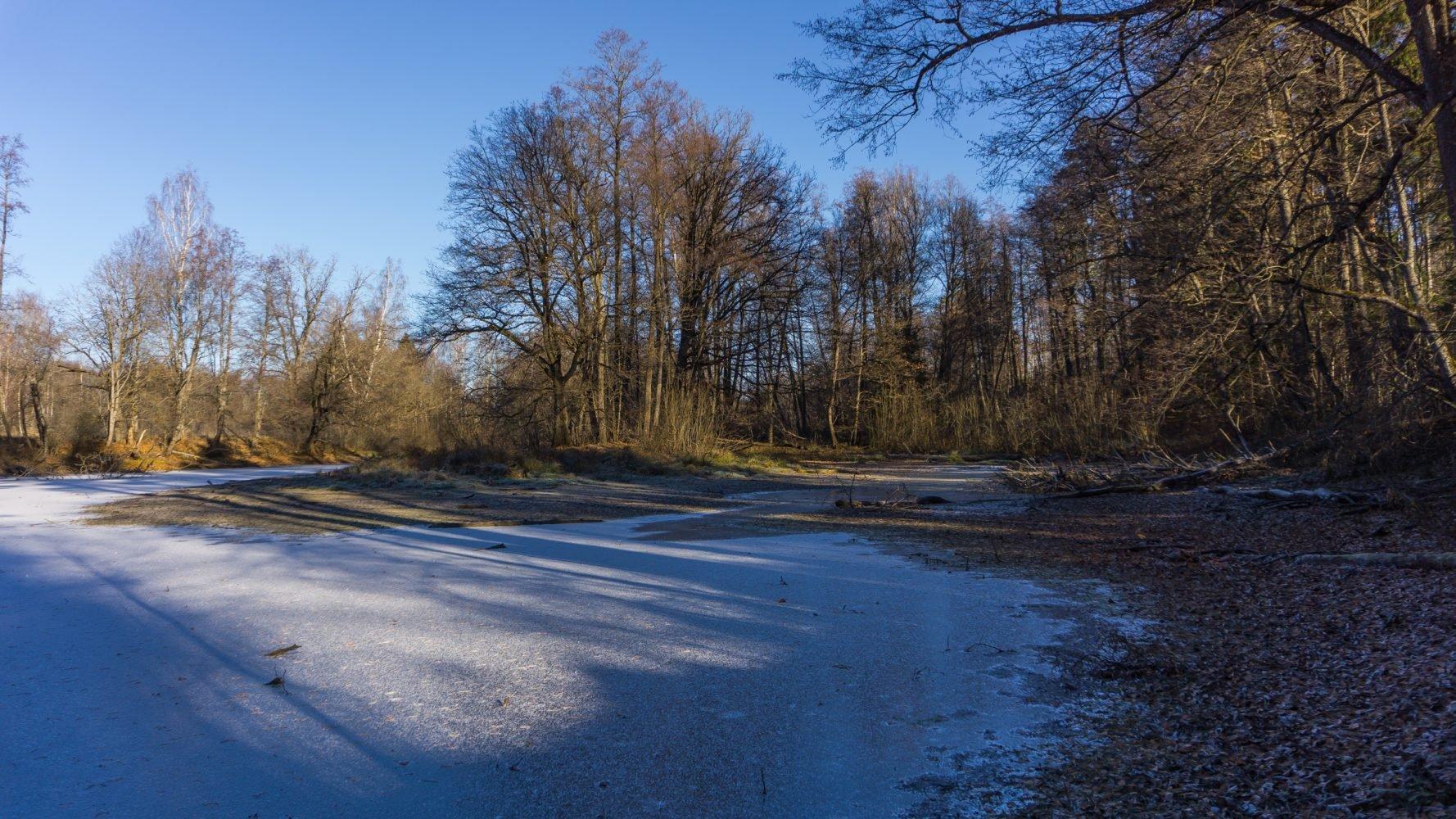 Озеро Гришино. Вода совсем низко, лед больше 3 см.