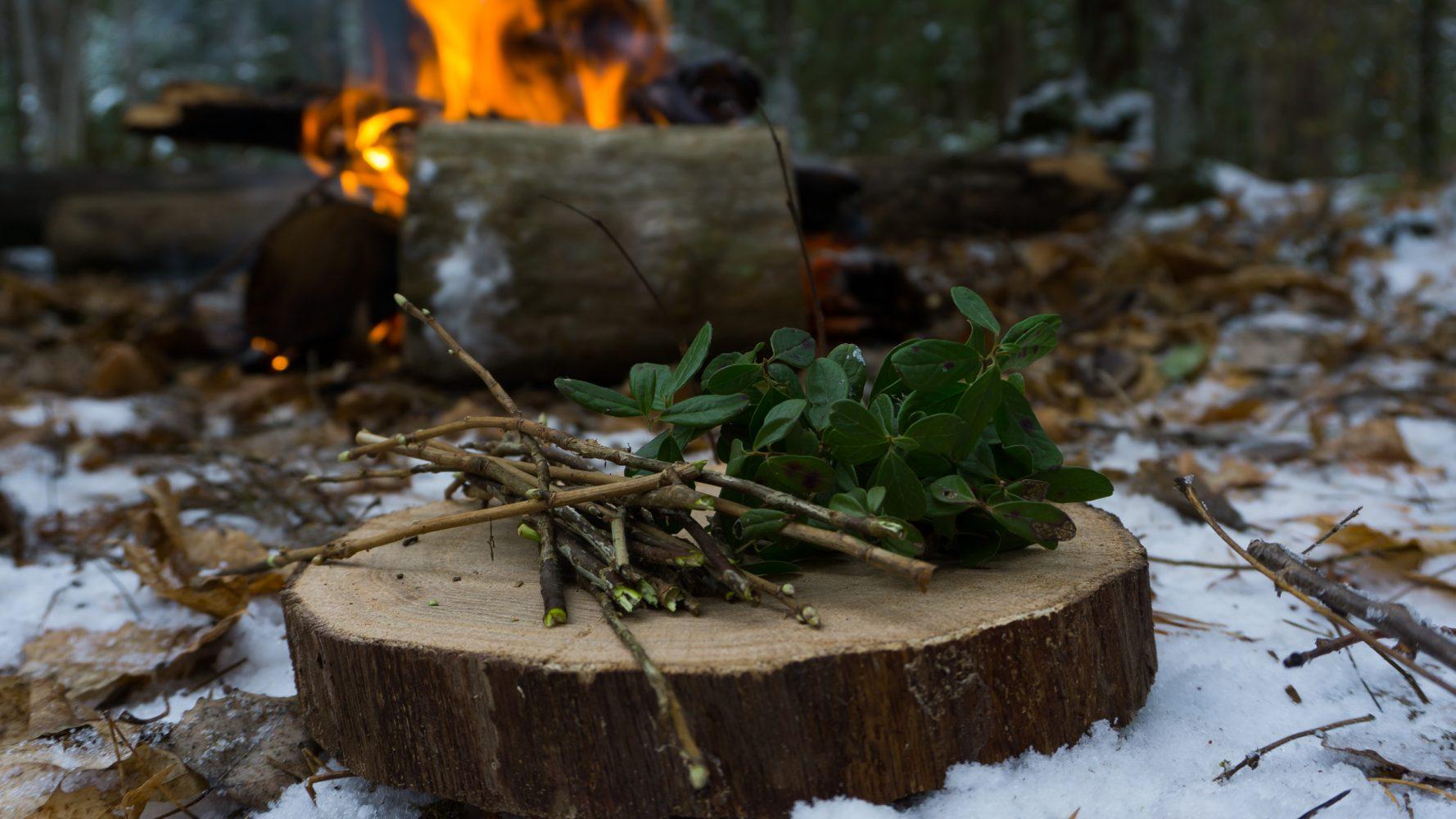 И веточки лесной смородины. Аромат — ах!