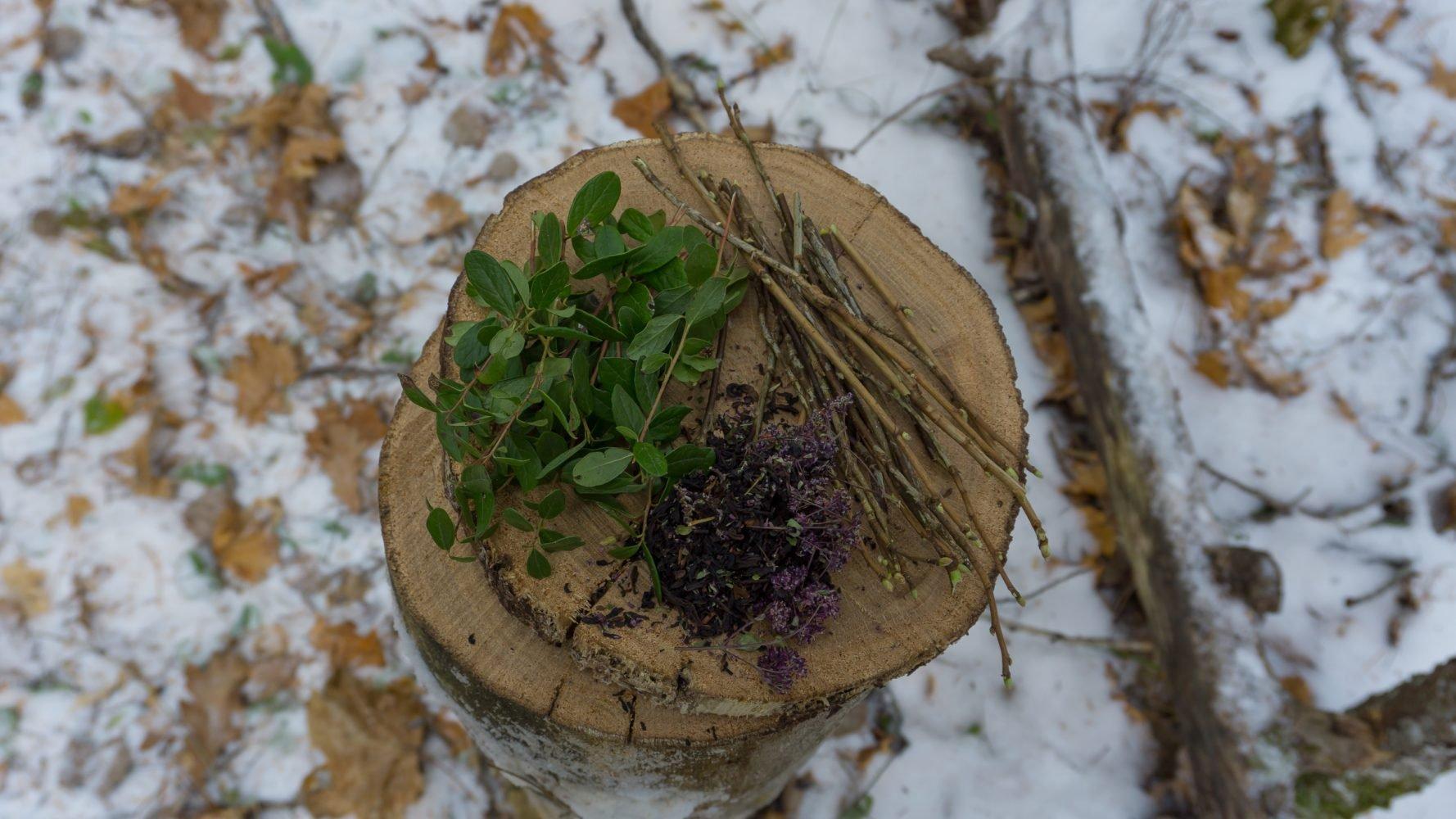 Азбука вкуса: черный чай, душица, брусничный лист, смородина