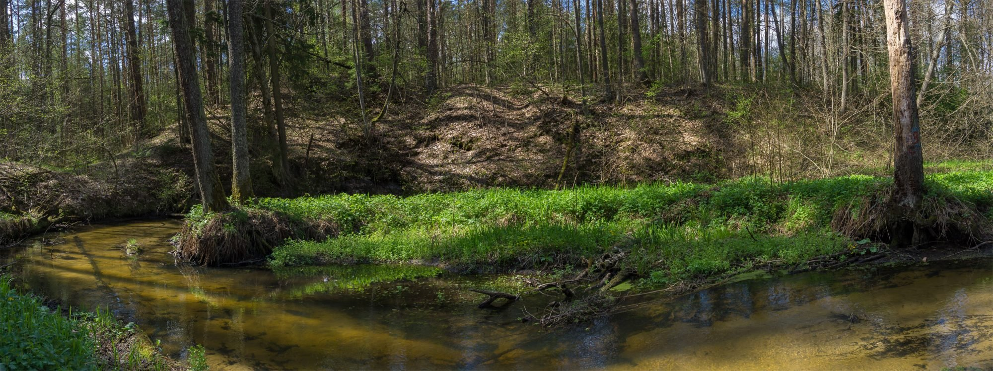 Балтский курган на берегу речки