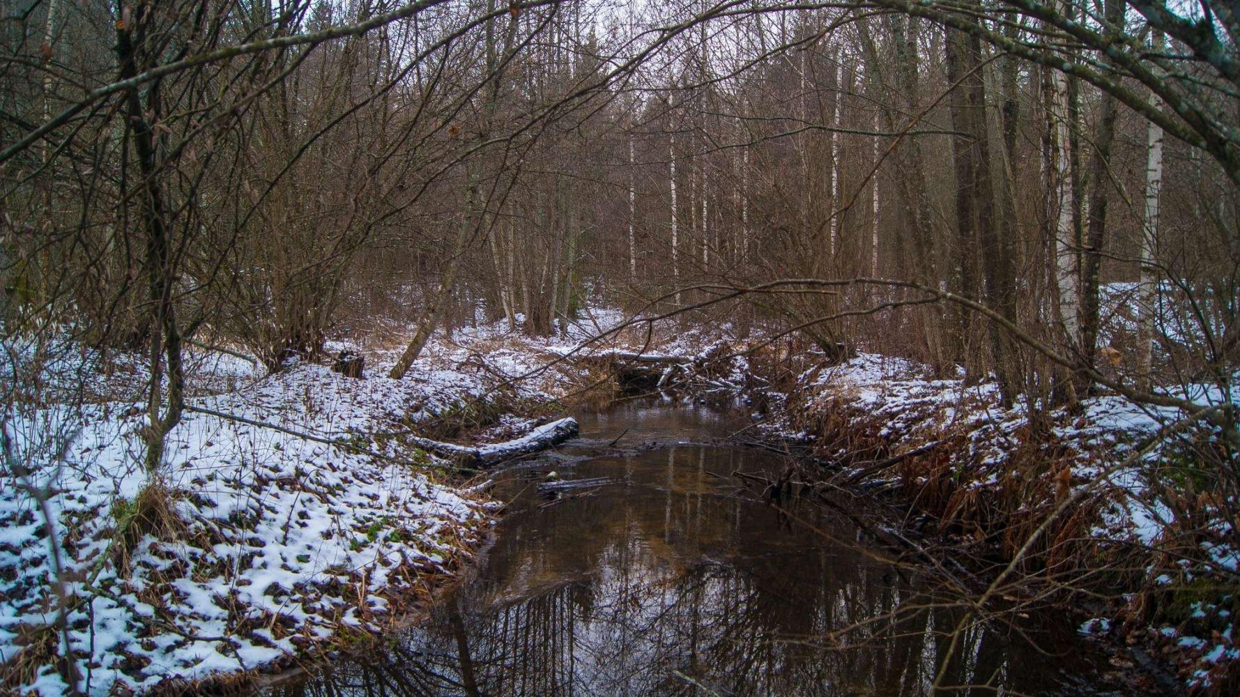 река Невижка, неподалеку от большого партизанского лагеря