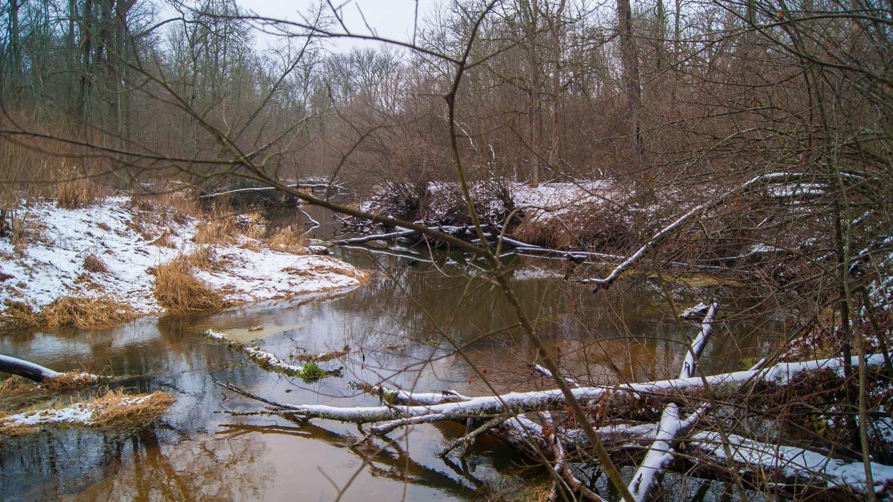 река Опороть