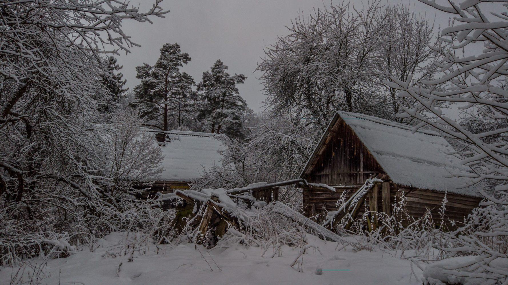 Последний дом в Житных Полянах