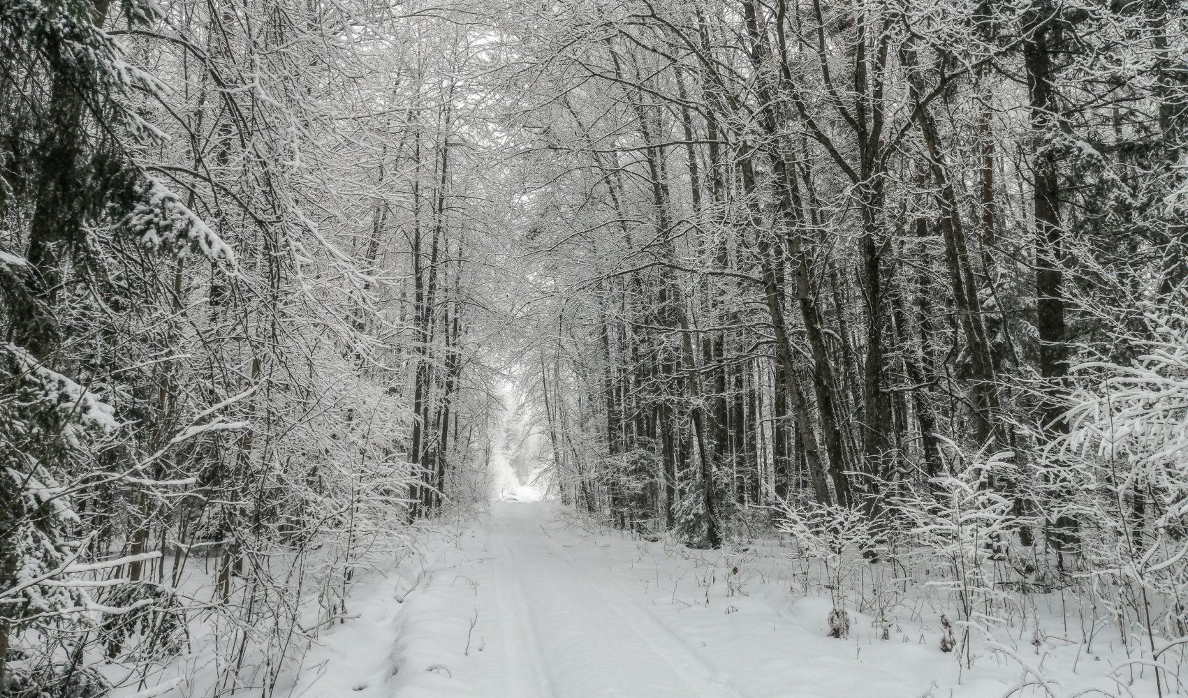 Тоннель в зиму