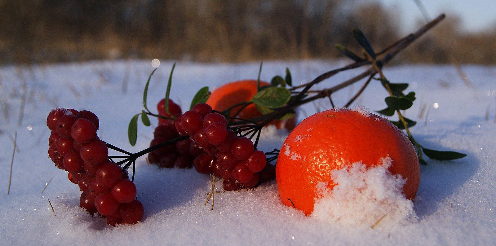 Тёплые цвета января
