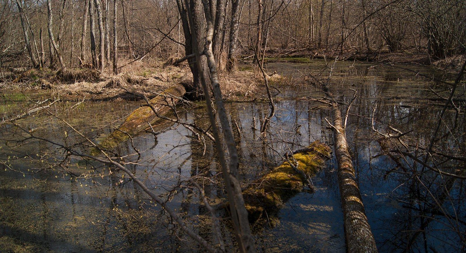 край тысячи озер и проток в позднем апреле