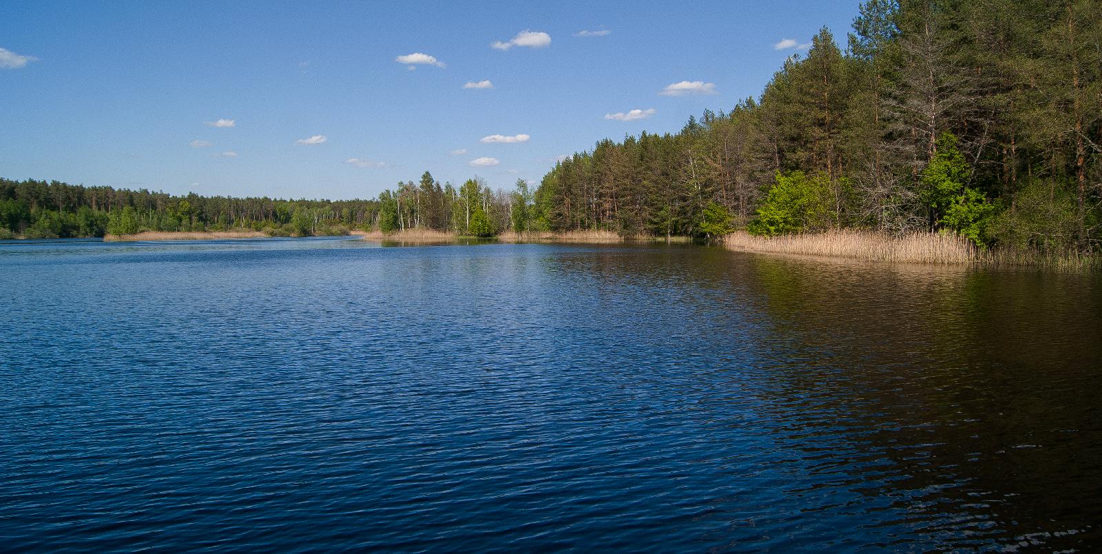 заповедное запрудное озеро в Навлинском районе