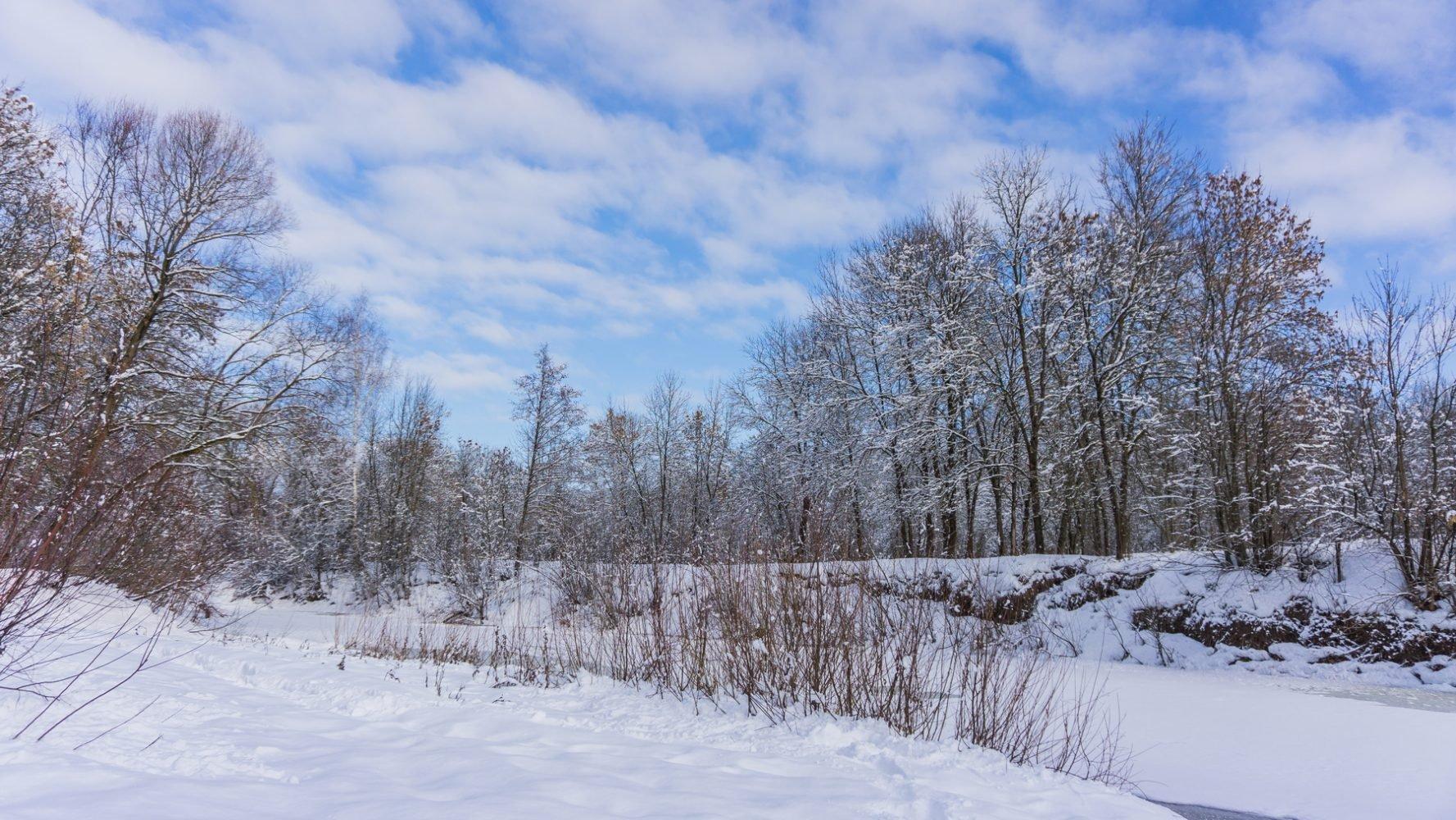 Солнечно-снежная Снежеть