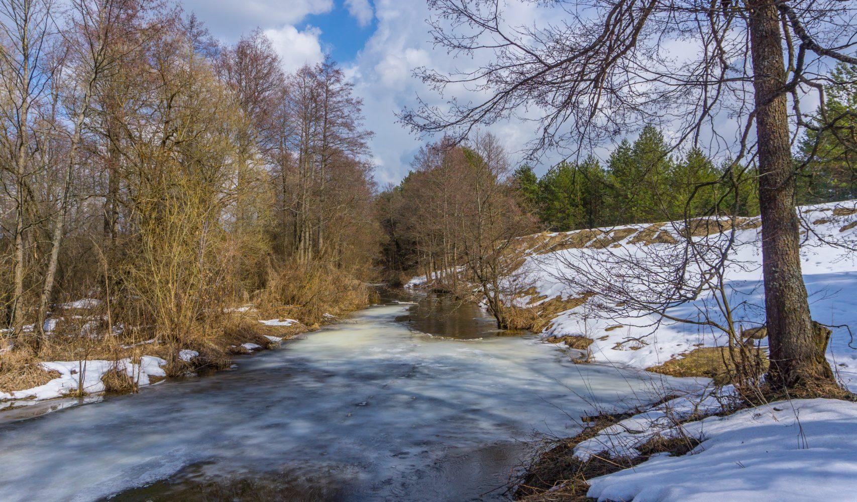 Река Ревна на излёте марта