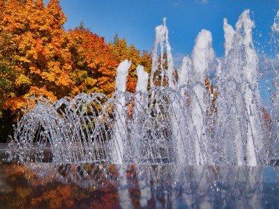 Оранжевый фонтан