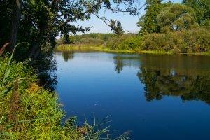 Гаваньские дубравы и Глухое озеро
