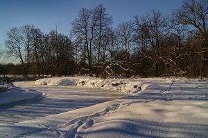 Зима на Ревне